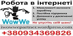 I Wow We Partner